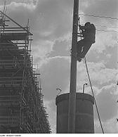 Fotothek df ps 0000295 Elektromonteur mit Steigeisen am Holzmast einer Baustelle.jpg