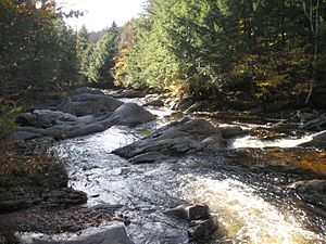 Fowler River - Fowler River at upper Fowler River Road crossing in Alexandria, NH
