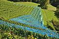 Freienstein-Teufen 2011-09-21 14-41-34.JPG