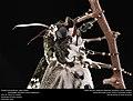 Freshly-eclosed Rustic Sphinx Month (Sphingidae, Manduca rustica (Fabricius)) (32508539074).jpg