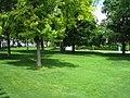 Friedrichsplatz - Mannheim - geo.hlipp.de - 27838.jpg