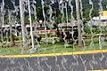 Fuente y carruaje en Jardin Botanico en Caguas, Puerto Rico.jpg