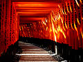 Fushimi Inari-taisha sembon-torii.jpg