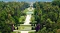Garden in algiers Algeria.jpg