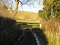 Gateway, Gidacre Lane - geograph.org.uk - 1071787.jpg