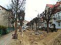 Gdańsk ulica Asnyka (marzec 2012).JPG