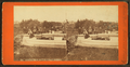 General view, Boston Public Garden, by Union View Co..png