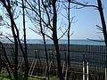 Genkai Sea from Pine grove near Nishinoura Beach.JPG