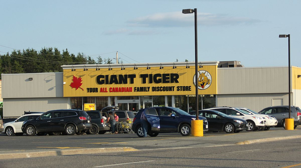 Giant Tiger Canada: Coupon for $5 off - DealsScoop.com
