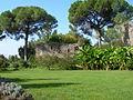 Giardini di Ninfa n3.JPG