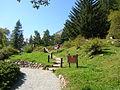 Giardino Botanico Alpino Paradisia abc7.JPG