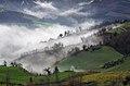Gioco di nebbie e colori sul Fondovalle Rubicone.jpg