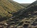 Glen Macduff - geograph.org.uk - 331814.jpg