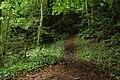 Glenoe glen (2) - geograph.org.uk - 242143.jpg
