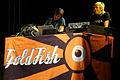 Goldfish band.jpg