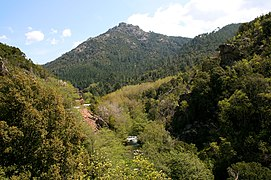 Gorges du Prunelli JPG1.jpg