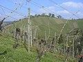Grabkapelle Württemberg, Rotenberg - panoramio.jpg