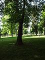 Gradski Park-Skopje (152).JPG