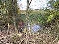 Gregg's Pitt - geograph.org.uk - 65676.jpg
