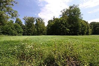 Greng - Meadow at Greng-Spitz
