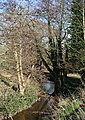 Gresty Brook - geograph.org.uk - 389827.jpg