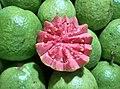 Guava - Psidium guajava fruit of Tamilnadu.jpg
