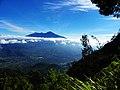 Gunung arjuno - panoramio.jpg