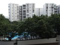 HK Kln Tong InnoCentre view 02 Fa Po Street view Village Gardens Sept-2012.JPG