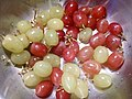 HK food 生果 fruit 葡萄子 Grapes texture red green July 2017 Lnv2 03.jpg