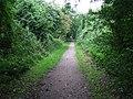 Hadleigh Railway Walk - geograph.org.uk - 523339.jpg