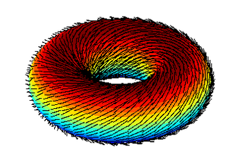 Hairy ball theorem - A hairy doughnut (2-torus), on the other hand, is quite easily combable.