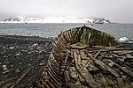 Half Moon Island, Antarctica. (24914215426).jpg