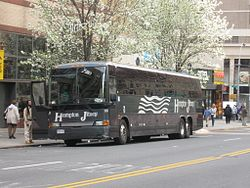 Long Island Jitney Schedule Port Authority