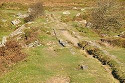 Haytor Granite Tramway near Haytor (8695).jpg