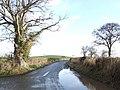 Haywood lane and Blakemore Hill - geograph.org.uk - 315709.jpg