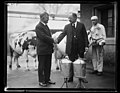 Henry C. Wallace and Magnus Johnson with cows LCCN2016892978.jpg