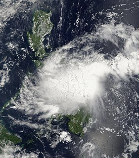 Tropical Storm Higos (2008)