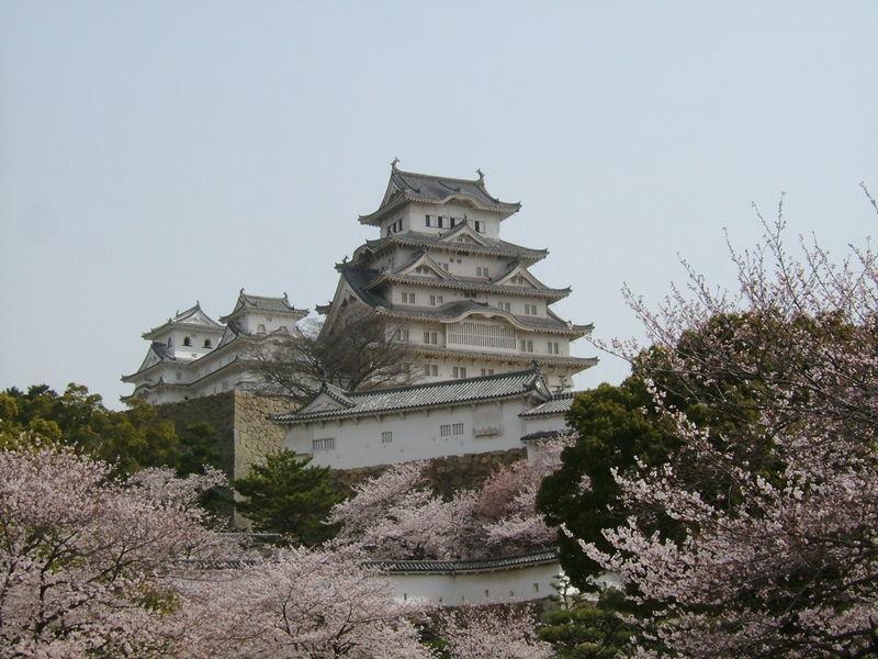 Berkas:Himeji castle sakura full bloom.JPG