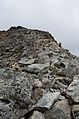 Hohe Geige west ridge 1.jpg