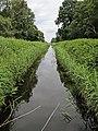 Holme Fen, Cambridgeshire (48092248436).jpg