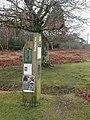 Holmsley, notice board - geograph.org.uk - 1139710.jpg