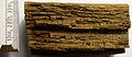 Holz Moderfäule.jpg