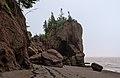 Hopewell Rocks2.jpg