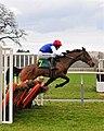 Horse racing (3310051436).jpg