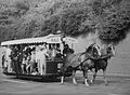 Horse tram Praha 1985b.jpg