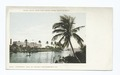 Hotel Royal Palm from Miami River, Miami, Fla (NYPL b12647398-62373).tiff