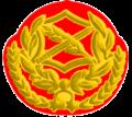 IDF RANAG Yam