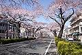 Ibaraki Prefectural Route-293 05.jpg