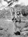 Indianska kommer hem från odlingen. Lokal, Missionsstn. Cavinas, nära Rio Beni, Bolivia - SMVK - 005005.tif