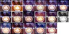 Collage di un'immagine modificata con i primi 16 diversi filtri presenti su Instagram